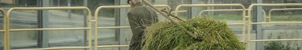 Les agriculteurs à la conquête du monde
